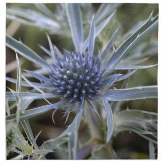 Amethyst Eryngo (Eryngium amethystinum) Serviette