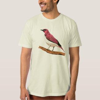 Amethystglanzstar T-Shirt