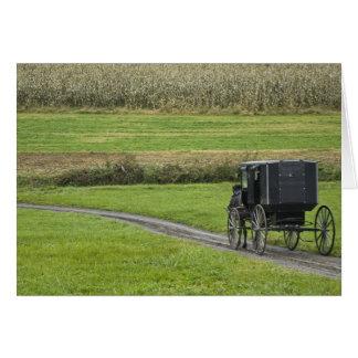 Amische Buggy auf Bauernhofweg, nordöstliches Karte