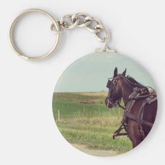 Amisches Pferd auf einer ländlichen Straße Schlüsselanhänger
