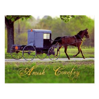 Amisches Pferd und Buggy, Lancaster, PA Postkarte