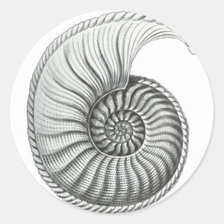 Ammonit Runder Aufkleber