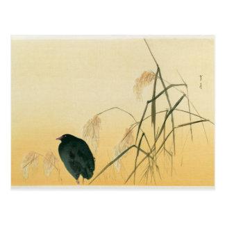 Amsel, die Edo-Zeit Postkarte