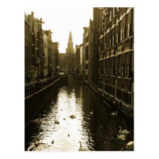 Amsterdam-Kanal-Schwan-Foto-Postkarte Postkarte