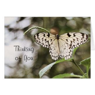 An Sie denken, Schmetterling - freier Raum Grußkarte