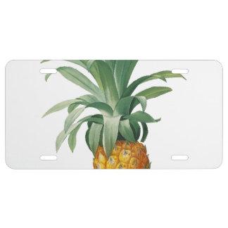 Ananas US Nummernschild