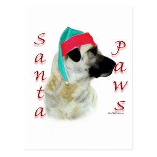 Anatolische Schäfer-Hundesankt-Tatzen Postkarte