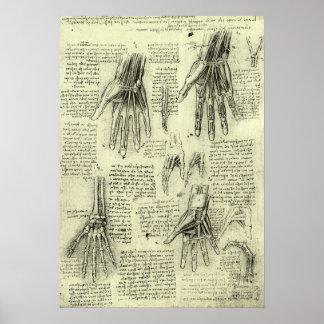 Anatomie der menschlichen Hand durch Leonardo da Poster