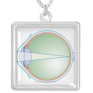 Anatomie des Auges Versilberte Kette