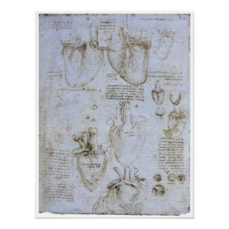 Anatomie des menschlichen Herzens, Leonardo da Vin Poster