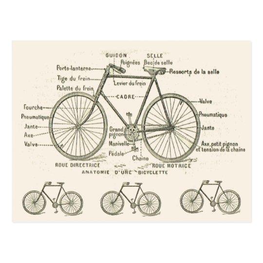Anatomie eines Fahrrades Postkarte | Zazzle