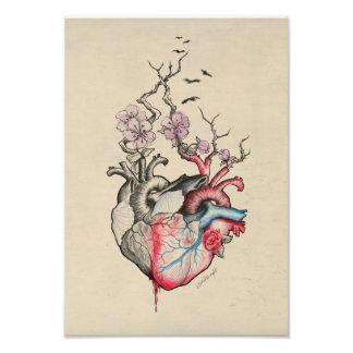 Anatomische Herzen der Liebekunst zwei mit Blumen Photos