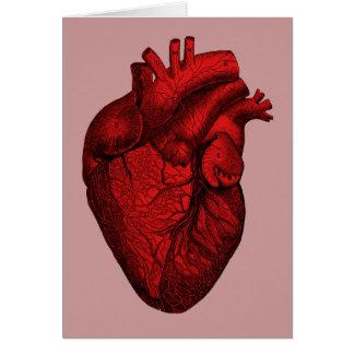Anatomisches menschliches Herz Karte