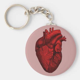 Anatomisches menschliches Herz Standard Runder Schlüsselanhänger