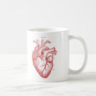 Anatomisches rotes Herz-Vintage Druck-Kaffee-Tasse Kaffeetasse