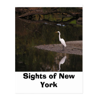 Anblick von New York Postkarte