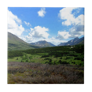 Anchorage Alaska Fliese