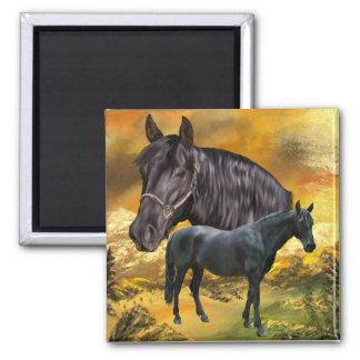 Andalusischer Pferdedruck Quadratischer Magnet