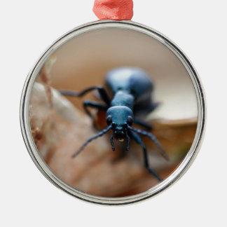 Anderes weltliches Insekt Rundes Silberfarbenes Ornament