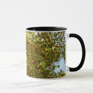 Änderndes Ahornbaum-Grün und Goldherbst Tasse