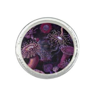 Anemonen in dunklem Lila Ring