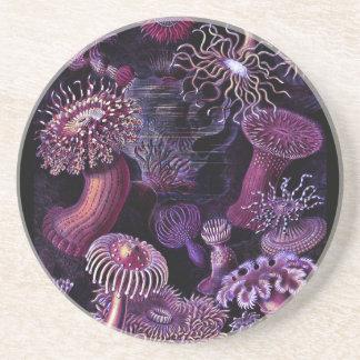Anemonen in dunklem Lila Sandstein Untersetzer