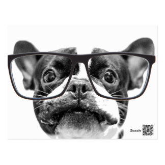 Angesehene französische Bulldogge mit Gläsern Postkarten