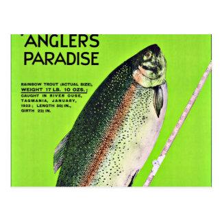 Angler-Paradies-Fischen Tasmaniens Australien Postkarte