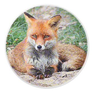 AnimalPaint_Fox_20171201_by_JAMColors Keramikknauf