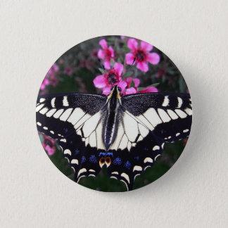 Anis-Frack-Schmetterlings-Knopf Runder Button 5,7 Cm