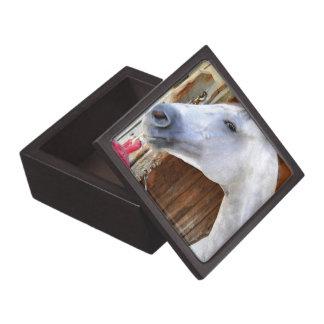 Anker unten - Pletcher Schachtel