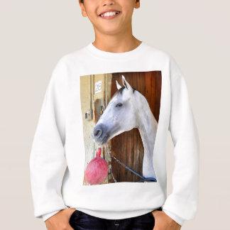 Anker unten - Pletcher Sweatshirt
