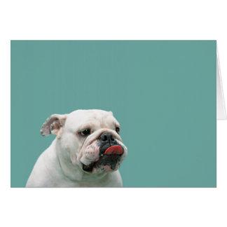 Anmerkungskarte des lustigen Gesichtes der Bulldog Mitteilungskarte