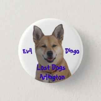 annie1234, verlorene Hunde Arlington, Übel         Runder Button 3,2 Cm