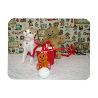 Annie Lebkuchen-Plätzchen (Katze/Kätzchen) Vinyl Magnet