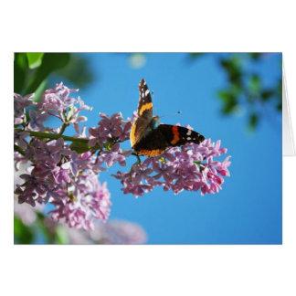 Annie Schmetterling Karte