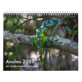 Anoles 2017 - Eine Anole Annalen-Produktion Wandkalender