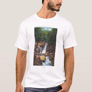 Ansicht des Heftigen Schlags-Bish fällt nahe T-Shirt