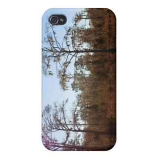 Ansicht vom Boot - Chocowinity, North Carolina iPhone 4 Cover