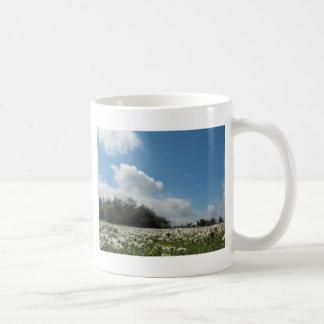 Ansicht von der Gänseblümchen-Bank Kaffeetasse