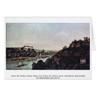 Ansicht von Pirna Pirna von den Reben bei Posta Karte