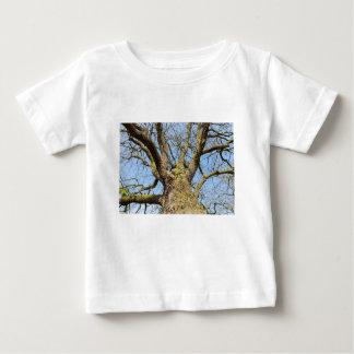 Ansicht von unteneichenbaum ohne Blätter im Winter Baby T-shirt