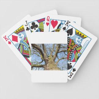 Ansicht von unteneichenbaum ohne Blätter im Winter Bicycle Spielkarten