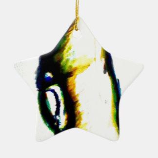 Anstarren in Verstand Keramik Stern-Ornament