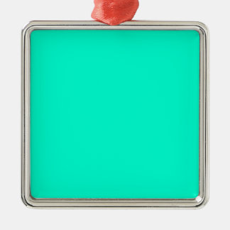 Antigua-Aquaaquamarine-blaues Grün tropisch Silbernes Ornament