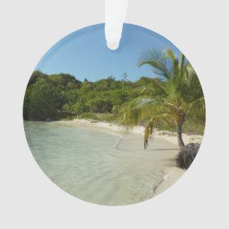 Antiguanischer Strand-schöne tropische Landschaft Ornament