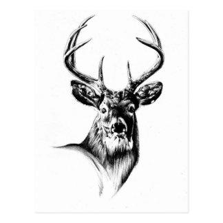 Antike Hirschkunst, die handgemachte Natur Postkarten