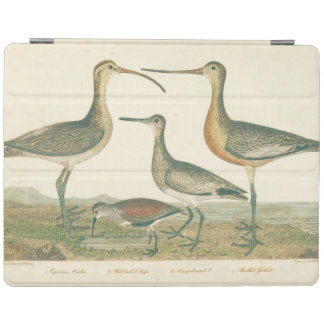 Antike Wasser-Vogel-Sumpf-Illustration iPad Hülle