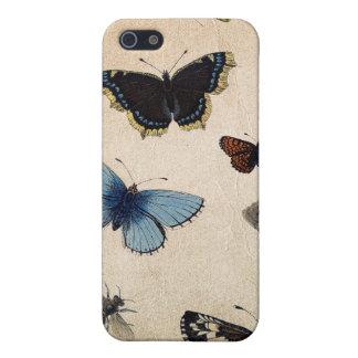 Antiker Schmetterlings-Speck-Kasten iPhone 5 Schutzhülle