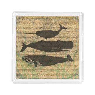 Antiker Wal-Vintage Grafik rustikal Acryl Tablett